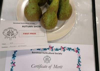 Banstead Horticultural Society